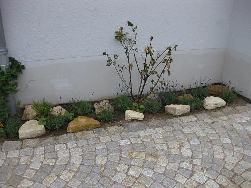 - unter dem Dachvorsprung keinen Kies verwenden  - lückenhafte Bepflanzung mit echtem Lavendel