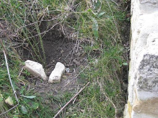 - Steilkanten ergeben sich bei Anpflanzungen an Böschungen oder Hügeln von allein